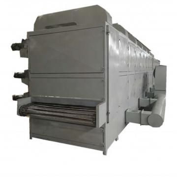Vegetable Fruit Drying Equipment