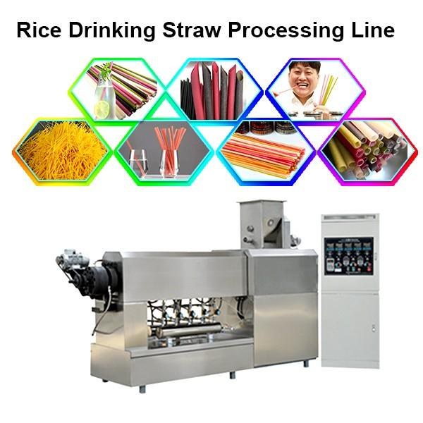 Biodegradable Drinking Straw Extruder