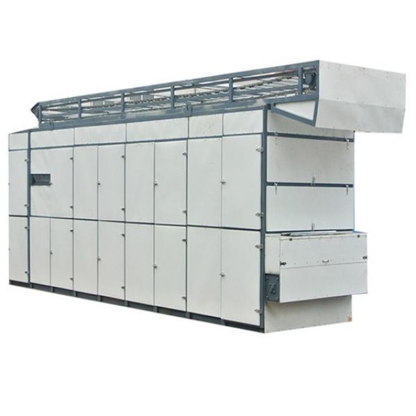 Onion Hot Air Steam Dryer/Mesh Belt Drying Machine