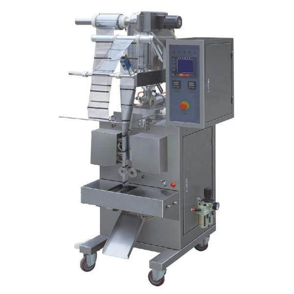 T Automatic Horizontal Type Ketchup Coffee Pillow Doypack Gusset Stand up Premade Pouch Packaging/Packing Machine